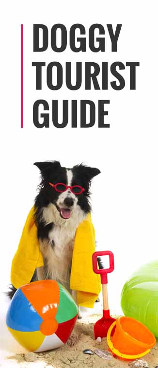 Doggy Tourist Guide