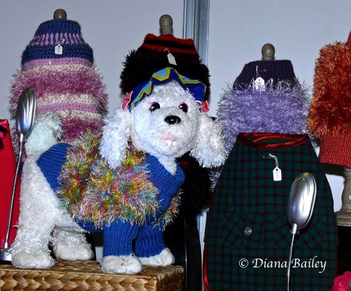 Crufts fashion 2