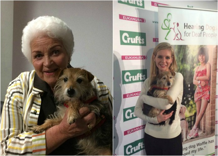 BB Science Editor, Lily, with Pam St Clement and Rachel Riley