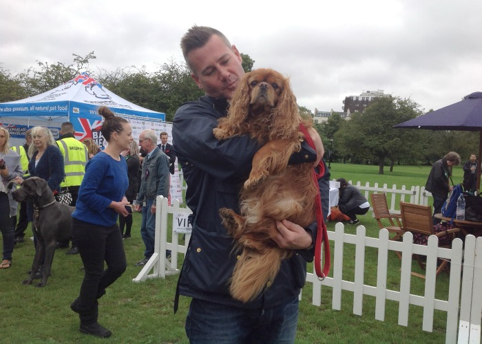 BB Editor, Frodo, with Tim Vincent