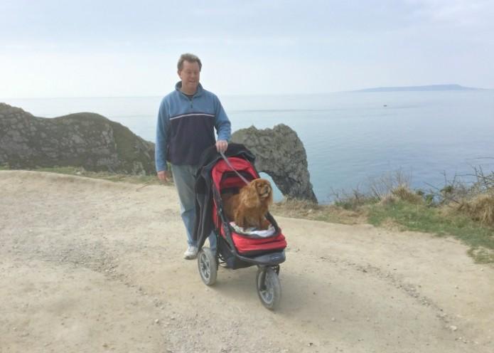 Dog-Stroller-dorset