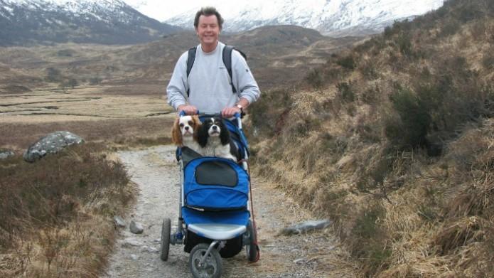 dog-strollers-1