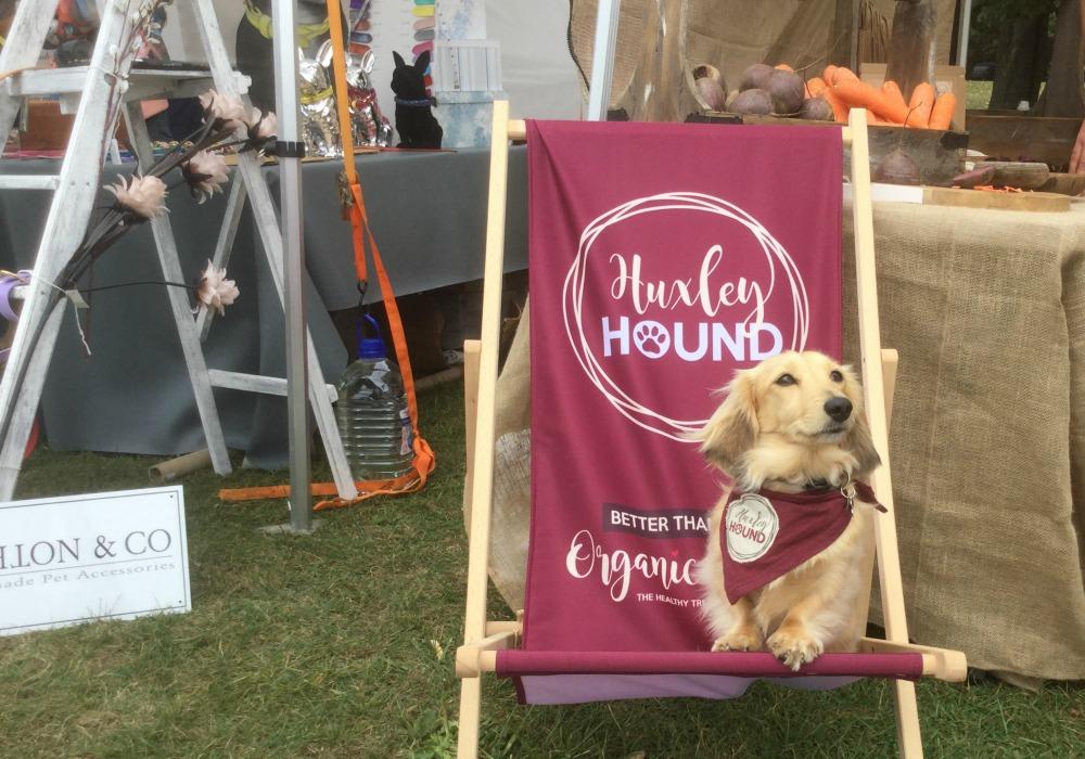 huxley-hound