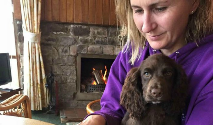 POLICE ISSUE FRESH APPEAL FOR STOLEN PUPPY