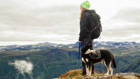 Beginner's Guide To Hiking With Your Dog