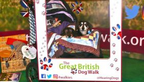 Emma and Dolly framed at Crufts