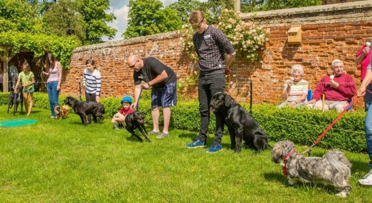 Bilney Hall hosts inaugural Dog Show