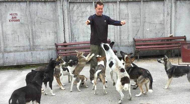The forgotten dogs of Chernobyl