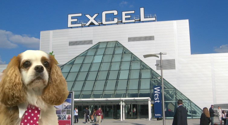Discover Dogs at Excel, London